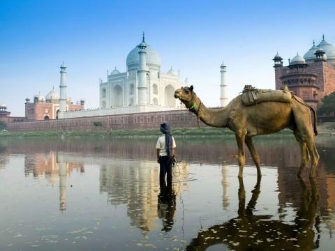 Delhi Taj Mahal Tour
